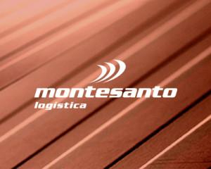 Montesanto Lógistica